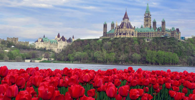 Image result for spring flowers in ottawa